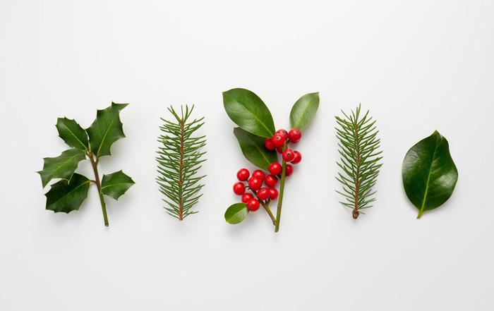 Cheamă Crăciunul mai devreme